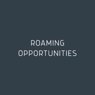 Roaming Opportunities